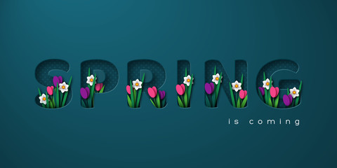 Spring is coming typographic design for seasonal greetings. 3d paper cut letters with spring flowers tulip and narcissus. Vector illustration.
