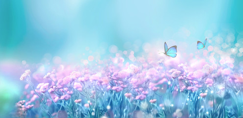 Wall Mural - Floral spring natural landscape with wild pink lilac flowers on meadow and fluttering butterflies on blue sky background. Dreamy gentle air artistic image. Soft focus, author processing.