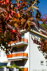 Sunny autumn in the city, house with balcony