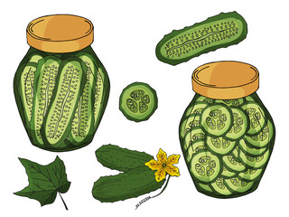 Collection of different objects. glass jar with home made cucumbers. Hand drawn objects isolated. Vector illustration.