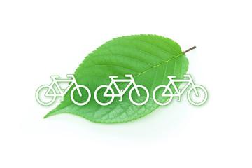eco 葉と自転車