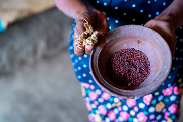 Sorghum grains in wooden bowl in hands of Sri Lankan woman