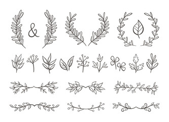 Floral ornament set. Hand drawn wreaths and text dividers made of branches with leaves and berries. Isolated on white background. Perfect for invitation cards and page decoration. Vector illustration.