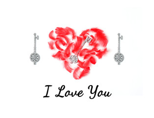 Postcard with the words I love you in black italics. Red heart is laid out of red feathers and decorative silver keys. Top view, square