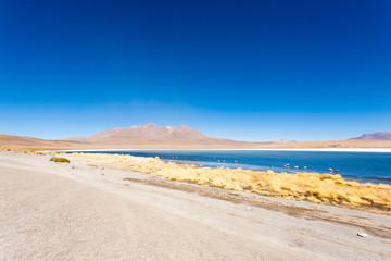 Laguna Canapa view, Bolivia