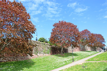 Exeter city walls in autumn