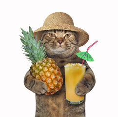 The cat in a straw hat holds a whole pineapple and a glass of fresh juice. White background.