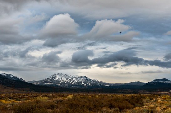 Birds fly through the stormy sky with Mammoth ski resort, CA, in the background.
