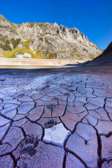 Bear tracks along the dried and cracked bottom of South Lake near Bishop, CA in the Eastern Sierra.