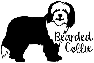 Bearded Collie silhouette black and white word