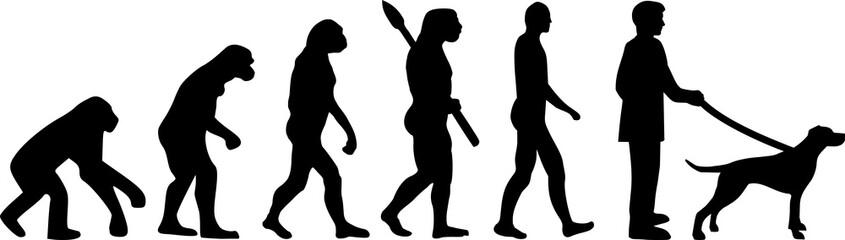 English Pointer evolution