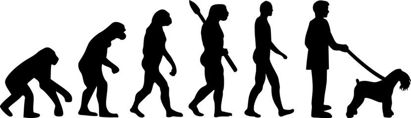 Kerry Blue Terrier evolution