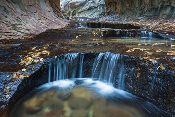 Zion National Park Slot Canyon Cascade