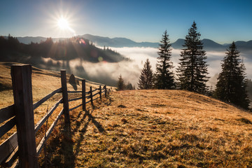 Beautiful sunny day is in Carpathians mountain landscape
