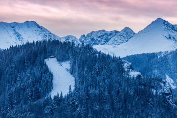 Fototapeta premium Zimowa panorama Zakopanego