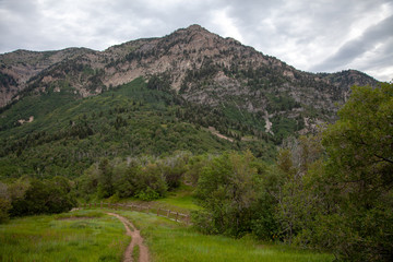 Wasatch Mountain Trail