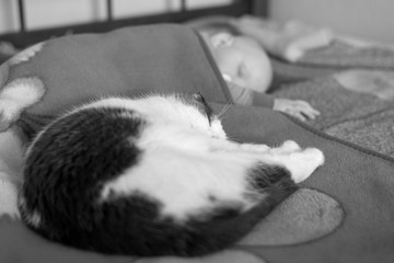 Baby and cat sleep together in the bed, black and white photo