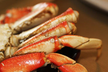Dungeness Crab Legs from the Pacific Ocean