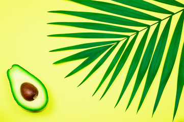 Avocado and palm leaf on yellow background.