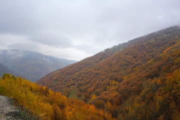 The seasonal  view of Havadorik Valley (derecik), Mus, Turkey