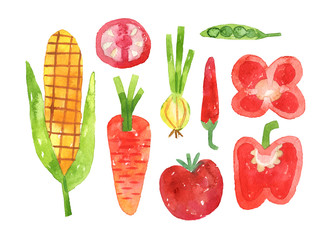 hand drawn set with watercolor vegetables collection