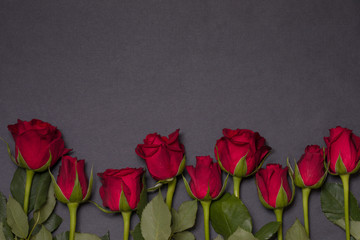 Valentines day background, seamless black background with red rose border, free copy text space