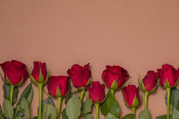 Valentines day background, seamless nude background with red rose border, free copy text space