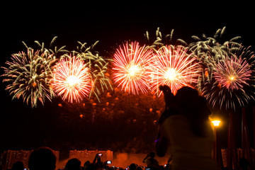 Viewers watch beautiful fireworks in the sky.