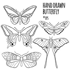 Butterfly set: vector collection