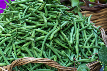 Farmers' market stall: heap of fresh green beans