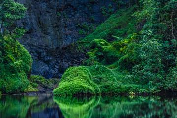 Vallée de Papenoo à Tahiti