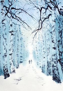 winter birch park