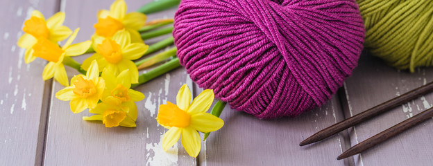 Spring colorful wool yarn with knitting wooden needles and yellow daffodils, hobby concept