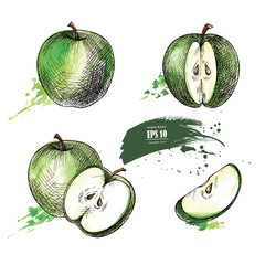 green apple hand drawn set