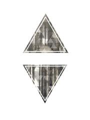 2 Dreiecke im Wald in Schwarz-Weiß