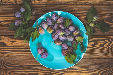 Plums in blue plate on dark wooden background