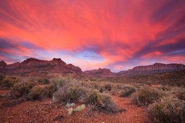 Poster Crimson Amazing sunset in Zion National Park, Utah