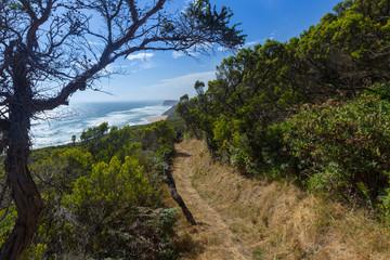 Australia Coast 19