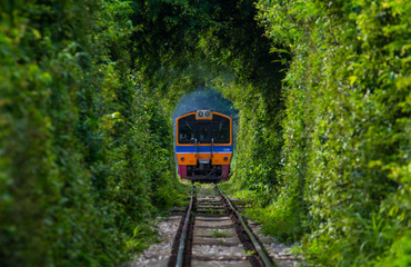 Tunnel of Love in Thailand