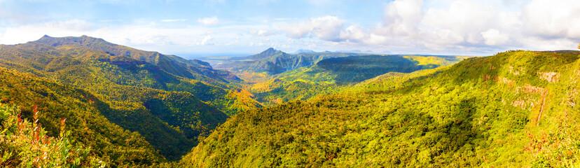 Fototapeta premium Park Narodowy Black River Gorges na Mauritiusie. Zajmuje powierzchnię 67,54 km². Park chroni większość pozostałych lasów deszczowych wyspy.