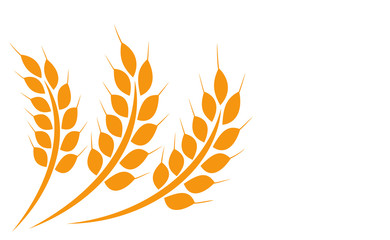 Agriculture wheat illustration design - vector for stock