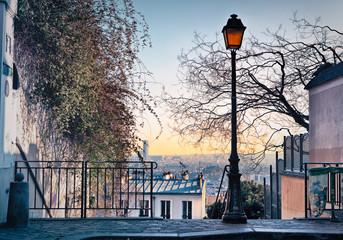 Street lamp and Paris skyline seen from Paris, France