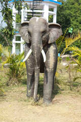 Statue of elephant at the garden