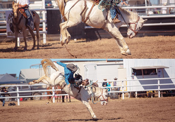 Cowboy And Bucking Saddle Bronco Collage
