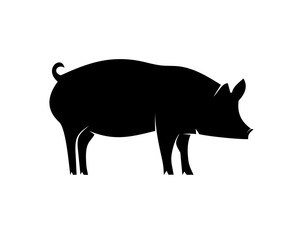 Pig animal black icon silhouette isolated on white background. Wild boar symbol of Chinese New Year 2019. Vector