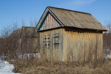 old abandoned wooden house in spring