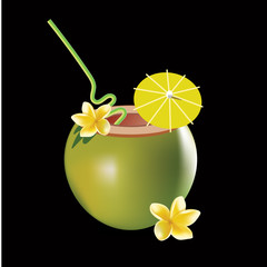 Coconut cocktail vector illustration isolated on black background. Realistic frangipani flower.