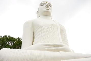 ホワイトブッダ寺院
