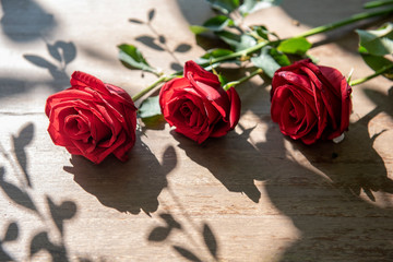 Red roses on wooden table background   with sunlight in morning, outside at home.