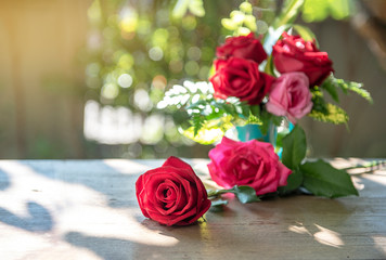 Select focus, Red rose flower , colourful roses in vase on wooden table, outside with sunrise in morning - image
